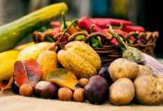 Warzywa i owoce - zdjęcie partnera