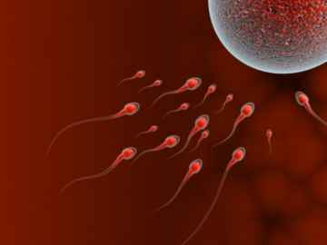 sperm attack, by jscreationzs / www.freedigitalphotos.net