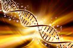 DNA, by dream designs/ www.freedigitalphotos.net