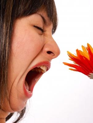 alergia kwiat, by Stuart Miles/ www.freedigitalphotos.net