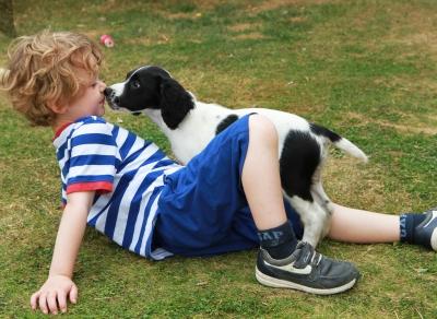 pies i dziecko,by Tina Phillips/ www.freedigitalphotos.net