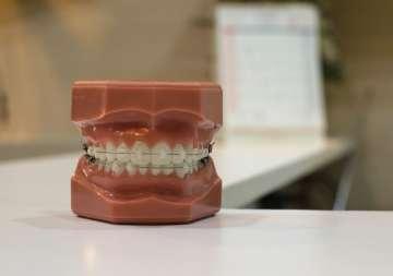 Aparat ortodontyczny na sztucznej szczęce - zdjęcie partnera
